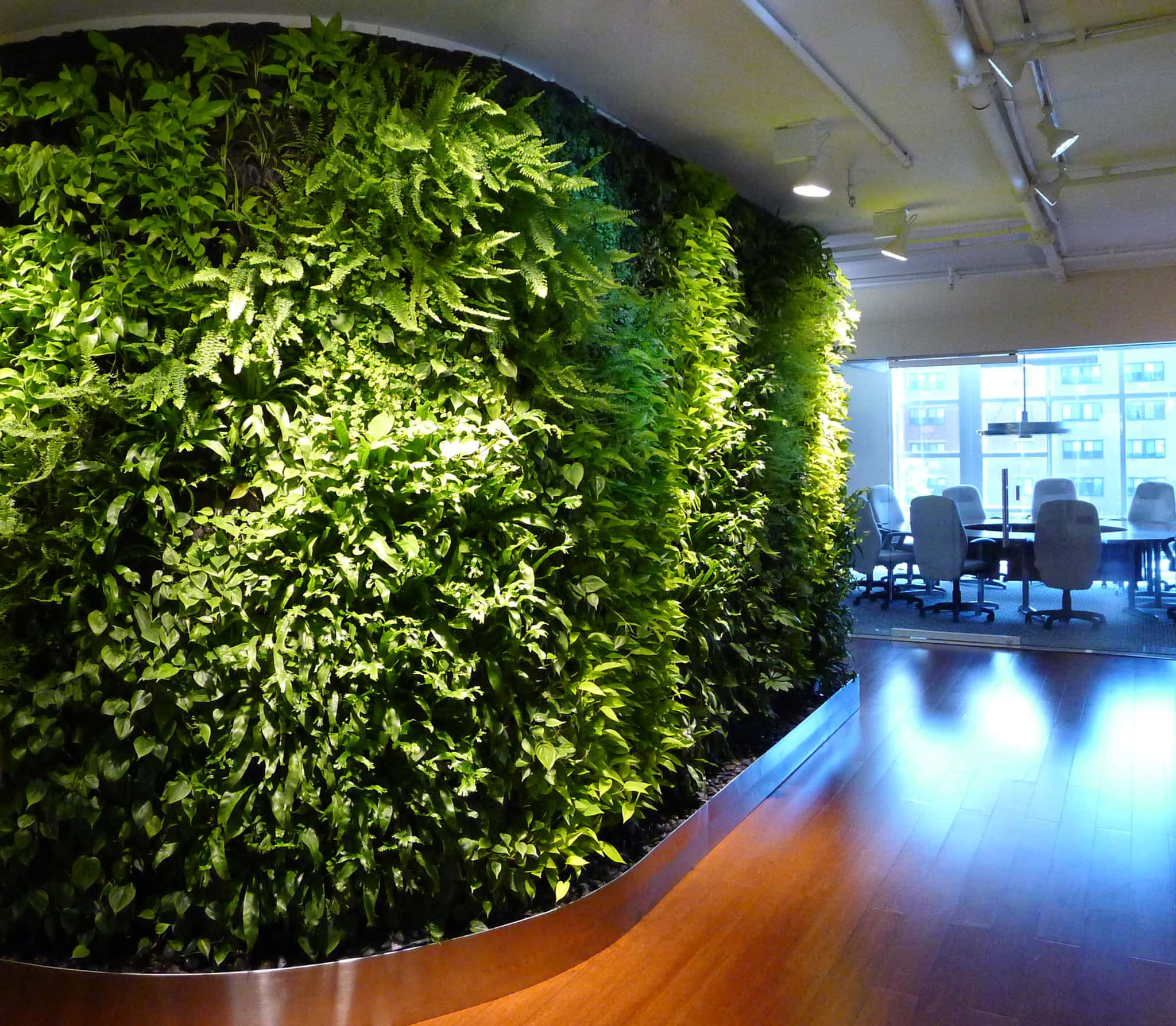 Indoor Living Wall Systems Start To Finish